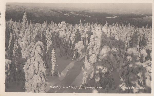 Utsikt fra Skjennungstaarnet.