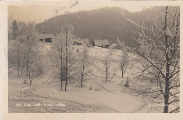 Bjørnholt, Nordmarken.