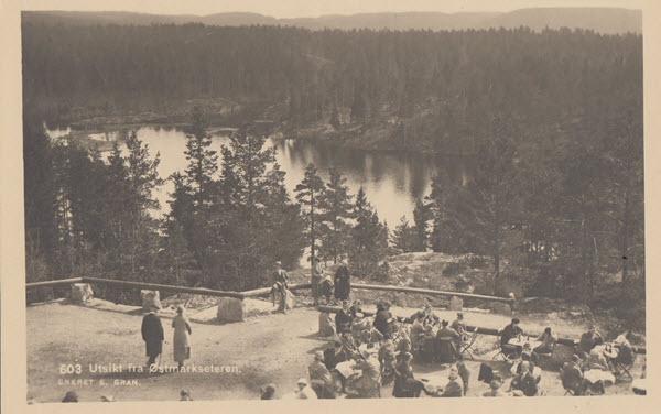 Utsikt fra Østmarkseteren.
