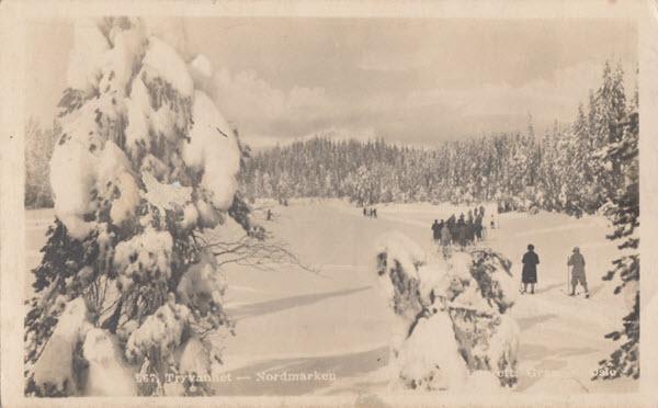 Tryvannet - Nordmarken