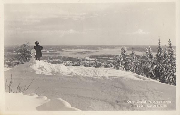 Oslo. Utsikt fra Kragstenen.