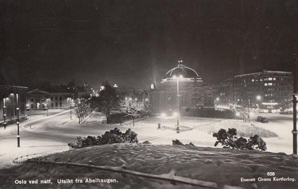 Oslo ved nett. Utsikt fra Abelhaugen.