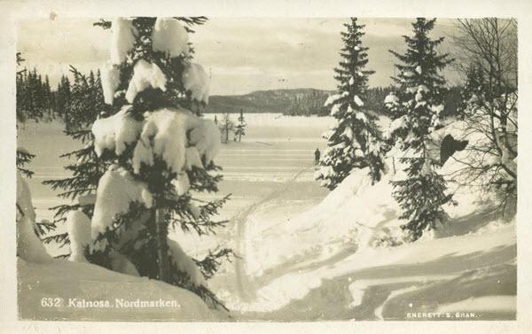 Katnosa, Nordmarken.