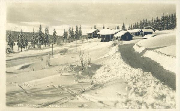 Katnosa - Nordmarken
